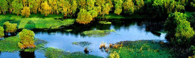 Sông nước Cà Mau - Đoàn Giỏi