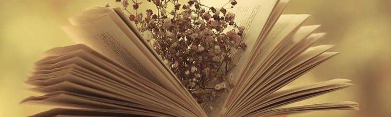 Thuyết minh về một thể loại văn học